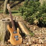 Micoud Guitares - Lutherie à Valence dans la Drome